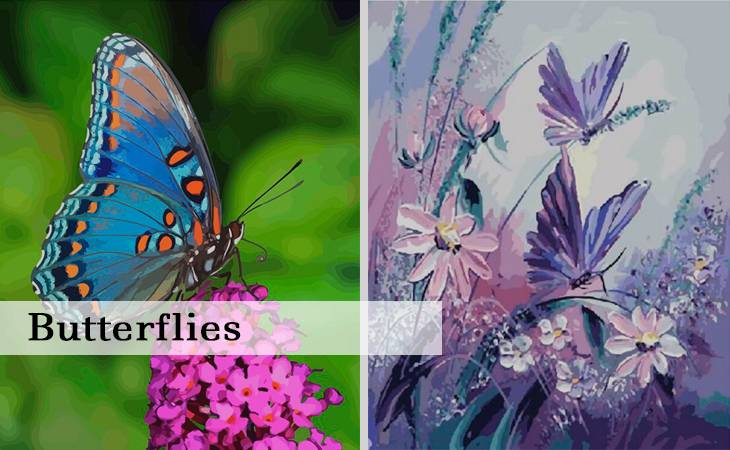 Butterflies Paint by Numbers kit