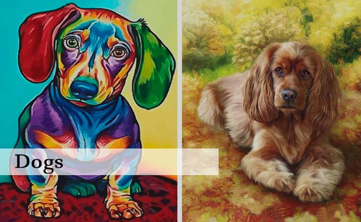 Dogs Paint by Numbers for Adults