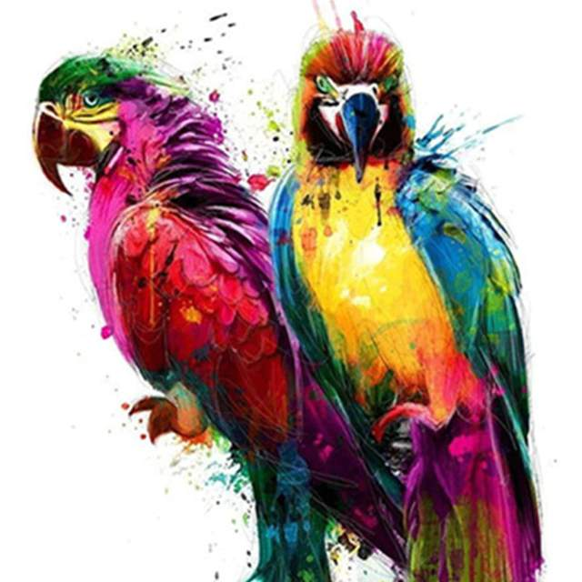 A Couple of Parrots - Picture by Numbers Kit for Adults