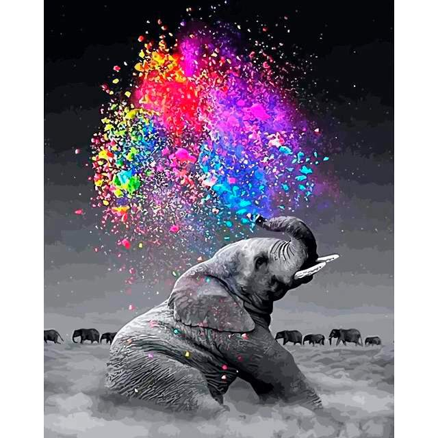 Black and White a Baby Elephant - Painting on Canvas Kit