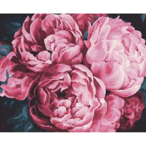 Bouquet of Pink Peonies - Acrylic Painting by Numbers Kits