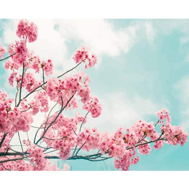 Cherry Blossom Branch - DIY Canvas by Numbers Kit for Adults