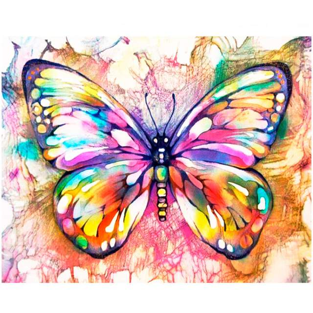 Colorful Butterfly - DIY Easy Paint by Numbers Kit for Beginner