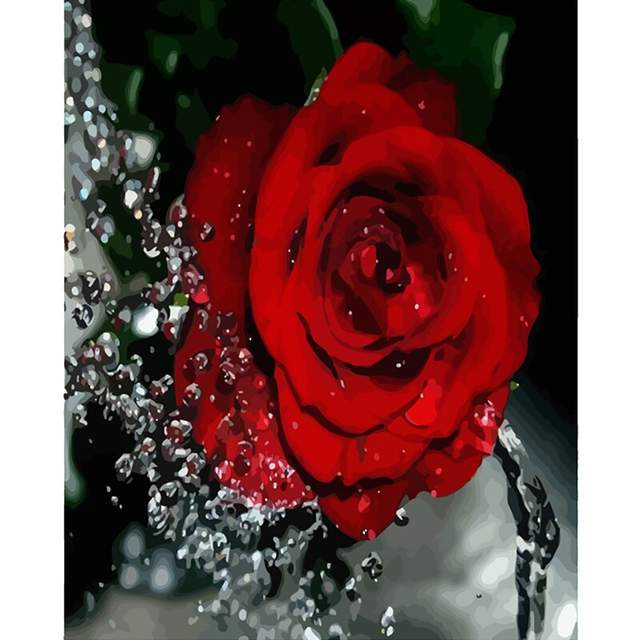 Dew Drops and Red Rose - DIY Painting by Numbers Kit for Adults