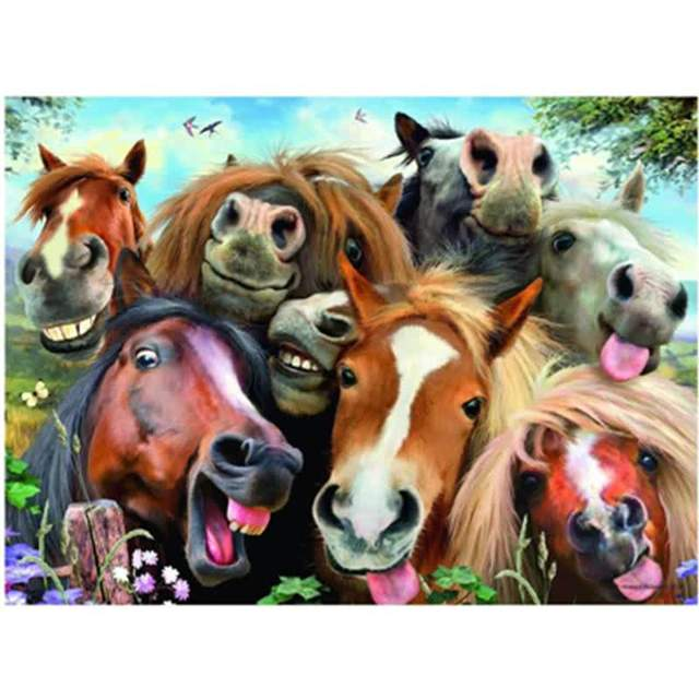 Funny Horses - DIY Paint on Canvas Kit