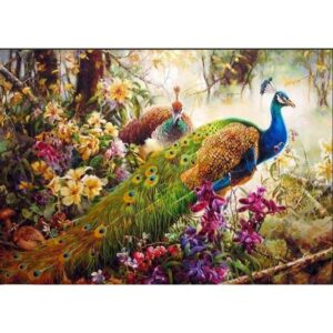 Indian Peacock Couple in Blooming Garden - Paint by Numbers Kit