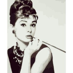Portrait of Audrey Hepburn - Painting by Numbers Kit