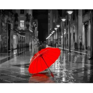 Red Umbrella DIY Oil Paint By Numbers Kit for Adults