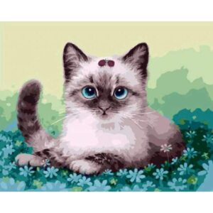 Siamese Cat - DIY Paint by Number Kit