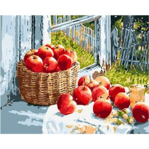 Still Life Red Apples on Window - DIY Drawing by Numbers Kit