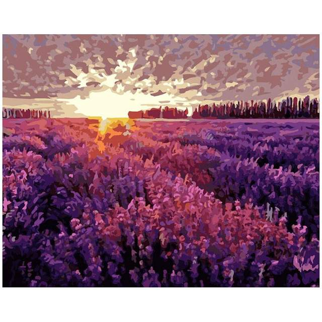 Sunrise over the Lavender Field - DIY Acrylic Draw by Numbers Set