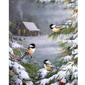 Three Chickadees on Pine Branch - Paint by Numbers Kit