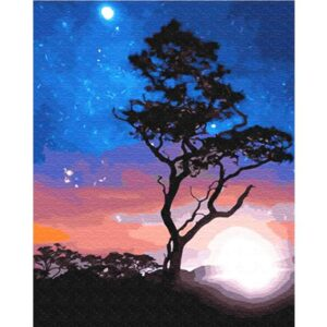 A Lonely Tree in Starry Night - Landscape paint by Numbers