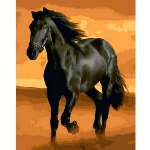 Black Horse - Painting by Numbers for Sale
