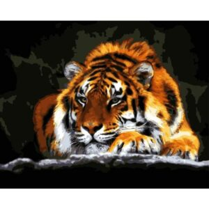 Calm Tiger - Acrylic Painting by Numbers Kit
