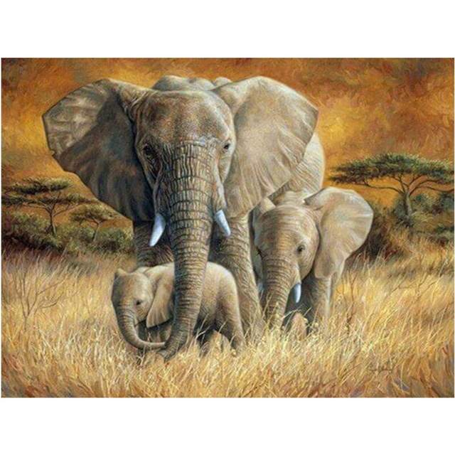 Elephant Family - Animals Paint by Number for Adults