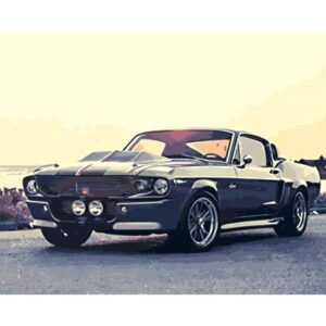 Ford Mustang Shelby Cobra GT500 1967 Paint by Numbers for Adults