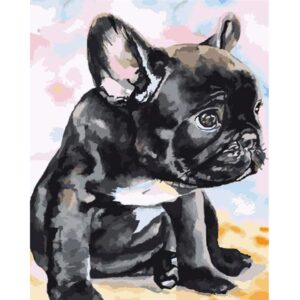 French Bulldog Puppy - Oil Painting by Numbers Kit