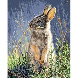 Grey Hare in the Meadow - Paint by Numbers Kit for Adults