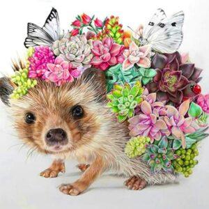 Hedgehog Succulent Plants - Paint by Numbers Kit