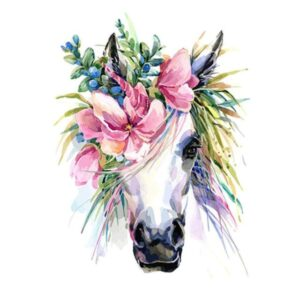 Horse Head with Flowers - Paint by Numbers for Sale