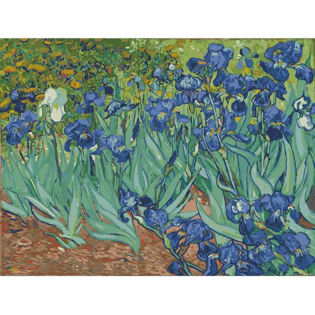 Irises by Vincent van Gogh 1889 Oil Painting by Numbers Kit