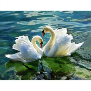 Lovely White Swan Couple - Numeral Painting for Adults