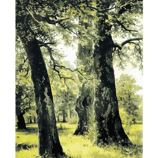 Mysterious Forest - Painting by Numbers for Sale