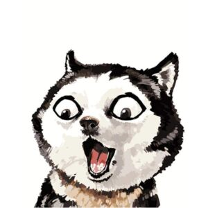 Portrait of Surprised Husky - Easy Paint by Numbers