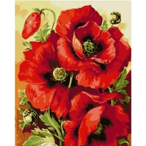 Pretty Poppies - Flower Paint by Numbers for Sale
