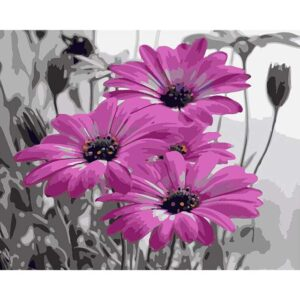 Purple Gerbera Daisies - Coloring by Numbers Kit