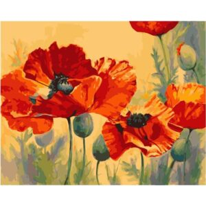 Red Poppies - Best Seller Paint by Numbers Kit