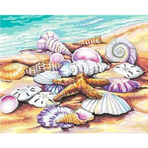 Starfish and Seashells on the Beach Paint by Numbers for Adults