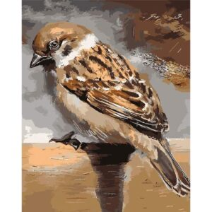The House Sparrow - Painting by Numbers for Sale