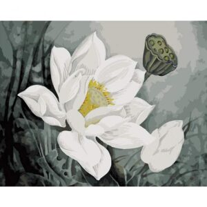 White Lotus Flower - Drawing by Numbers Kit