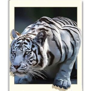 3D White Tiger - Paint by Numbers Kit