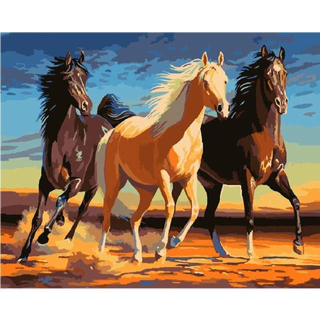 Beautiful Horses - Paint by Numbers for Adults