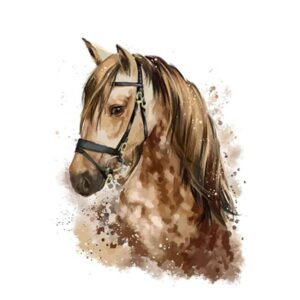 Brown Horse Portrait - Coloring by Numbers Animals