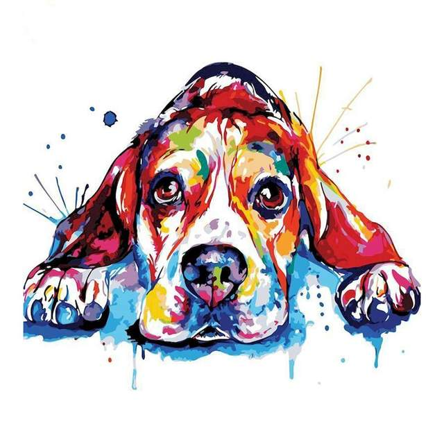 Colorful Beagle - Dogs Paint by Numbers