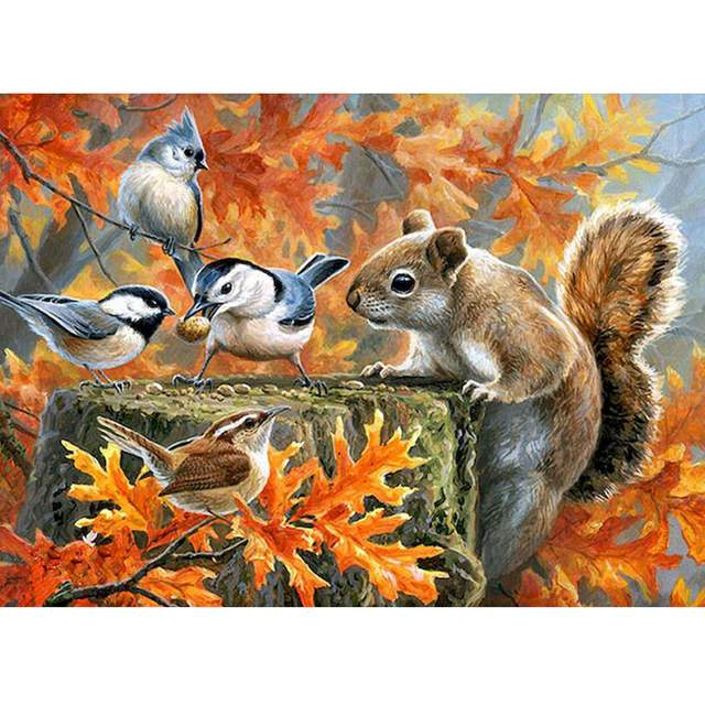 Grey Squirrel and Birds - Animals Painting by Numbers