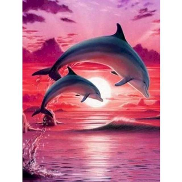 Pink Sky Dolphins - Paint by Numbers Fish