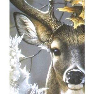 Red Deer Head - Animals Painting by Numbers