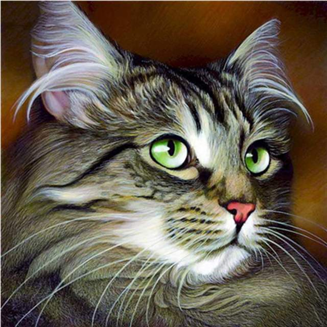 Siberian Cat - Paint by Numbers Kits