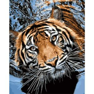 Swimming Tiger - Wildlife Paint by Numbers