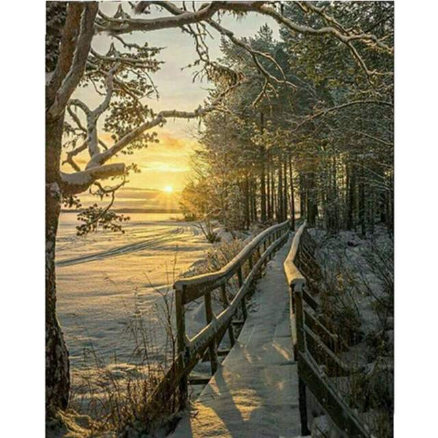 Winter Sunset in Forest - Paint by Numbers Landscape
