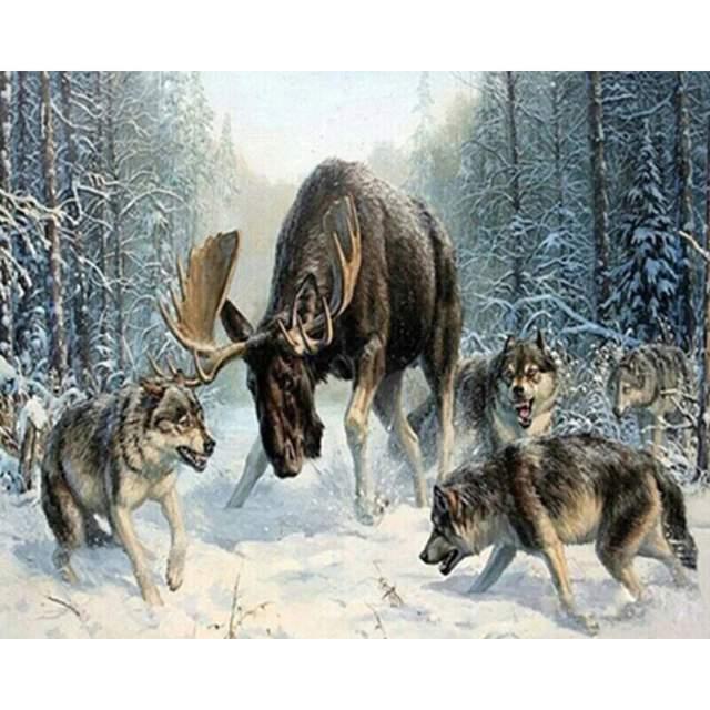 Moose vs Wolves - Paint by Numbers Wildlife